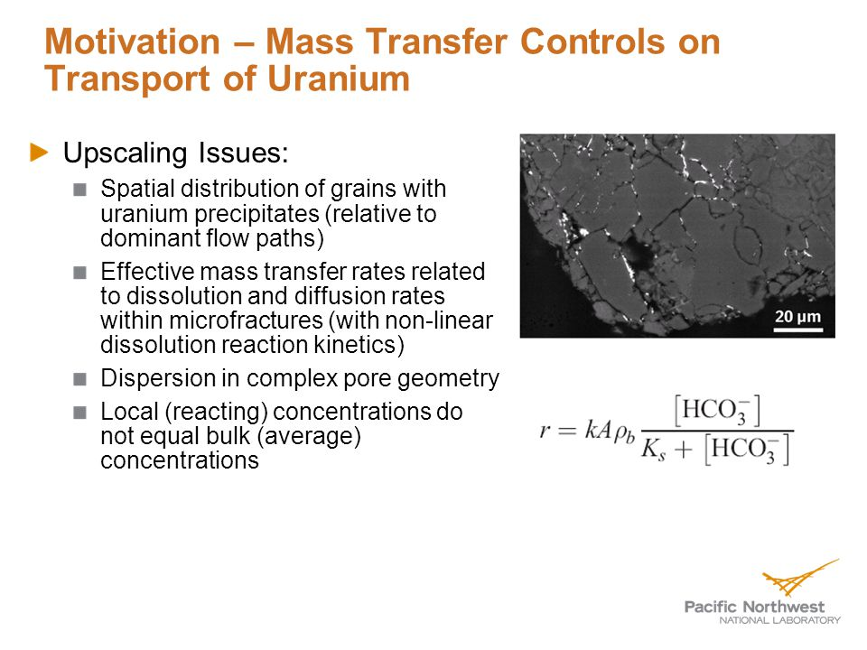 Motivation – Mass Transfer Controls on Transport of Uranium Upscaling Issues: Spatial distribution of grains with uranium precipitates (relative to dominant flow paths) Effective mass transfer rates related to dissolution and diffusion rates within microfractures (with non-linear dissolution reaction kinetics) Dispersion in complex pore geometry Local (reacting) concentrations do not equal bulk (average) concentrations