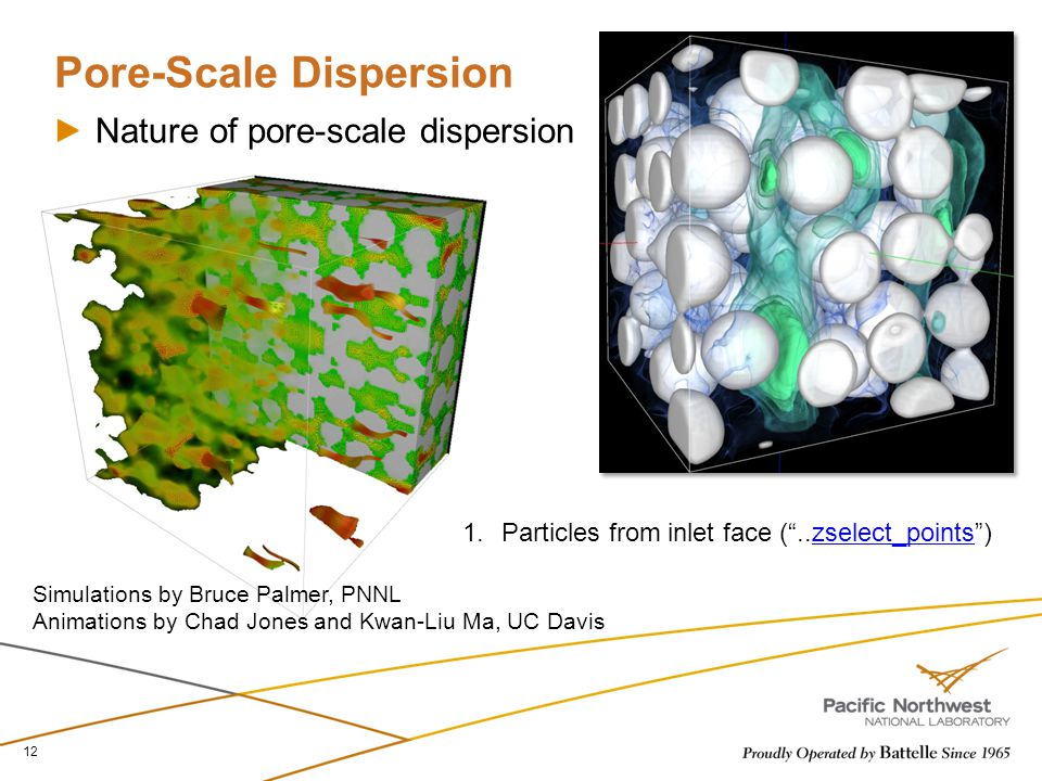 Pore-Scale Dispersion Nature of pore-scale dispersion 12 1.Particles from inlet face ( ..zselect_points )zselect_points Simulations by Bruce Palmer, PNNL Animations by Chad Jones and Kwan-Liu Ma, UC Davis