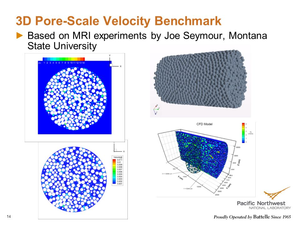 3D Pore-Scale Velocity Benchmark Based on MRI experiments by Joe Seymour, Montana State University 14