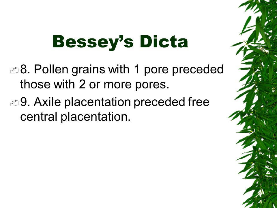 Bessey's Dicta  8. Pollen grains with 1 pore preceded those with 2 or more pores.  9. Axile placentation preceded free central placentation.
