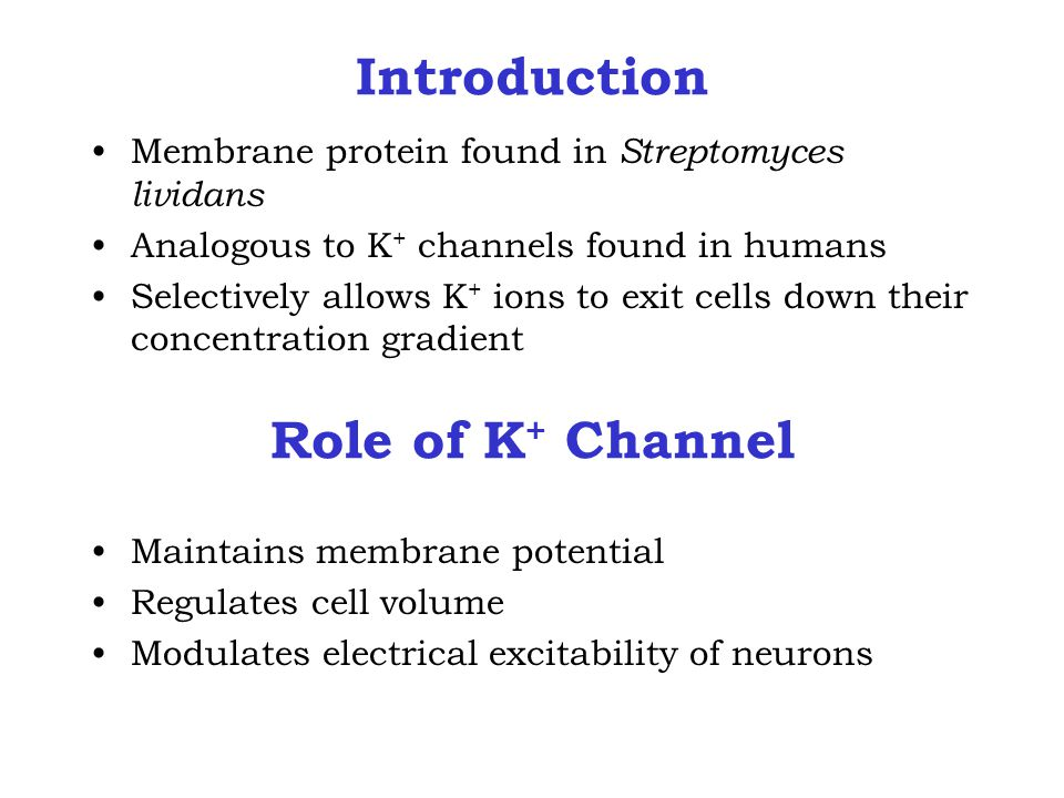 Introduction Membrane protein found in Streptomyces lividans Analogous to K + channels found in humans Selectively allows K + ions to exit cells down their concentration gradient Maintains membrane potential Regulates cell volume Modulates electrical excitability of neurons Role of K + Channel