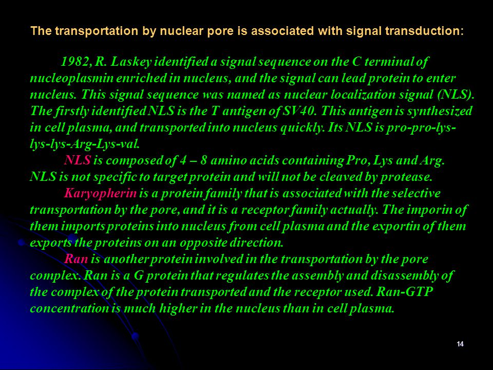 14 The transportation by nuclear pore is associated with signal transduction: 1982, R. Laskey identified a signal sequence on the C terminal of nucleo