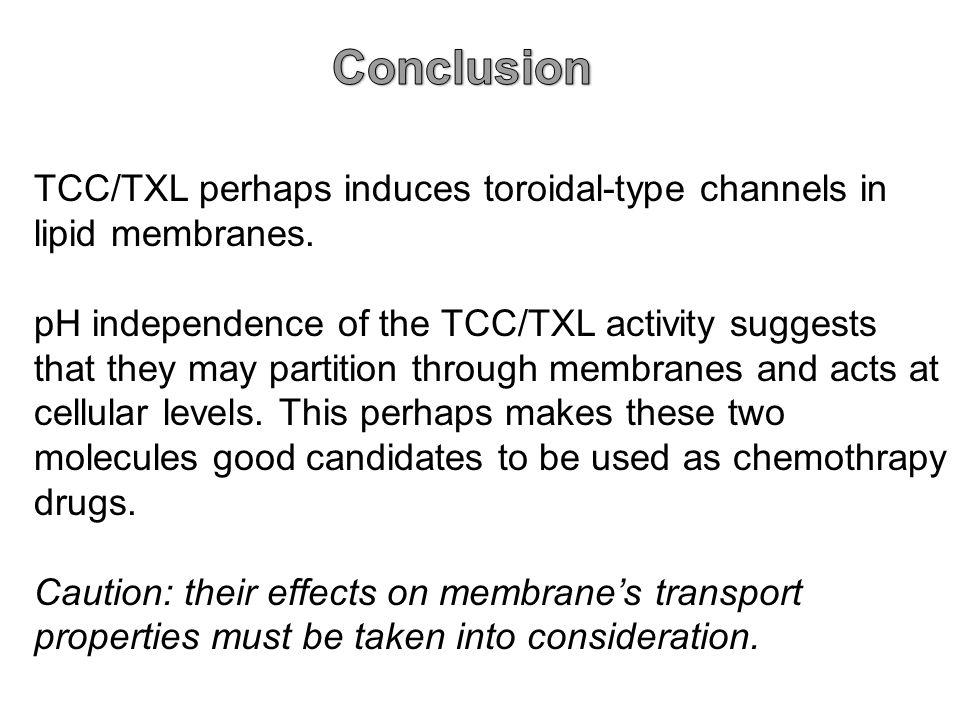 TCC/TXL perhaps induces toroidal-type channels in lipid membranes.