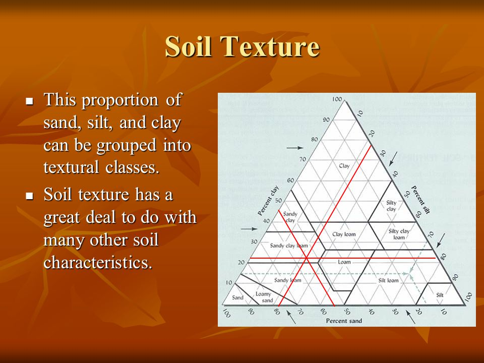 Soil Texture This proportion of sand, silt, and clay can be grouped into textural classes.