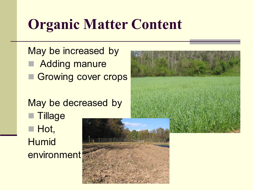 Organic Matter Content May be increased by Adding manure Growing cover crops May be decreased by Tillage Hot, Humid environment
