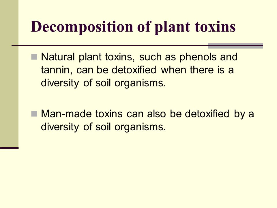 Decomposition of plant toxins Natural plant toxins, such as phenols and tannin, can be detoxified when there is a diversity of soil organisms. Man-mad