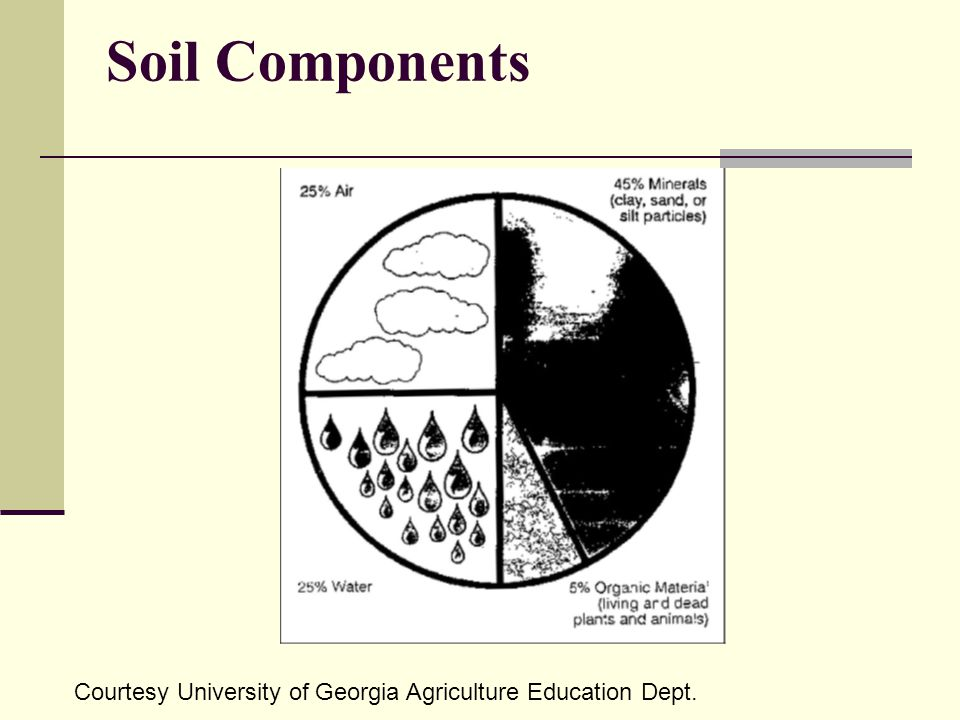 Soil Components Courtesy University of Georgia Agriculture Education Dept.