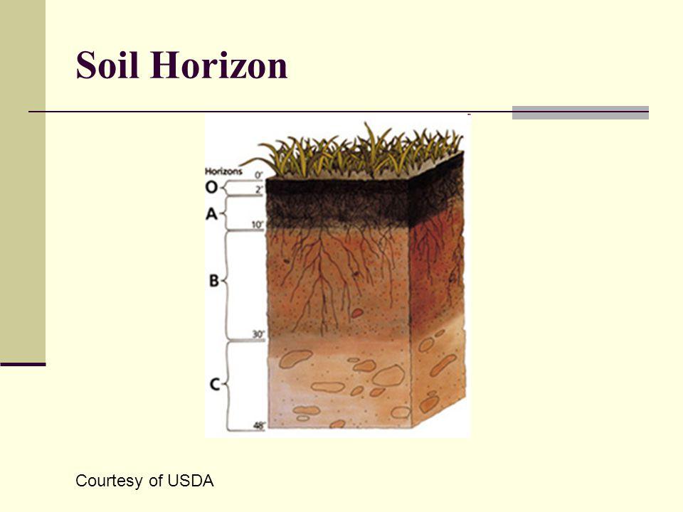 Soil Horizon Courtesy of USDA
