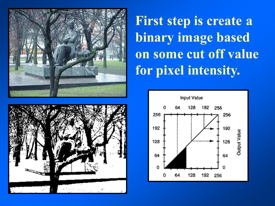 A binary image can also be adjusted to cover a subset of pixel values.