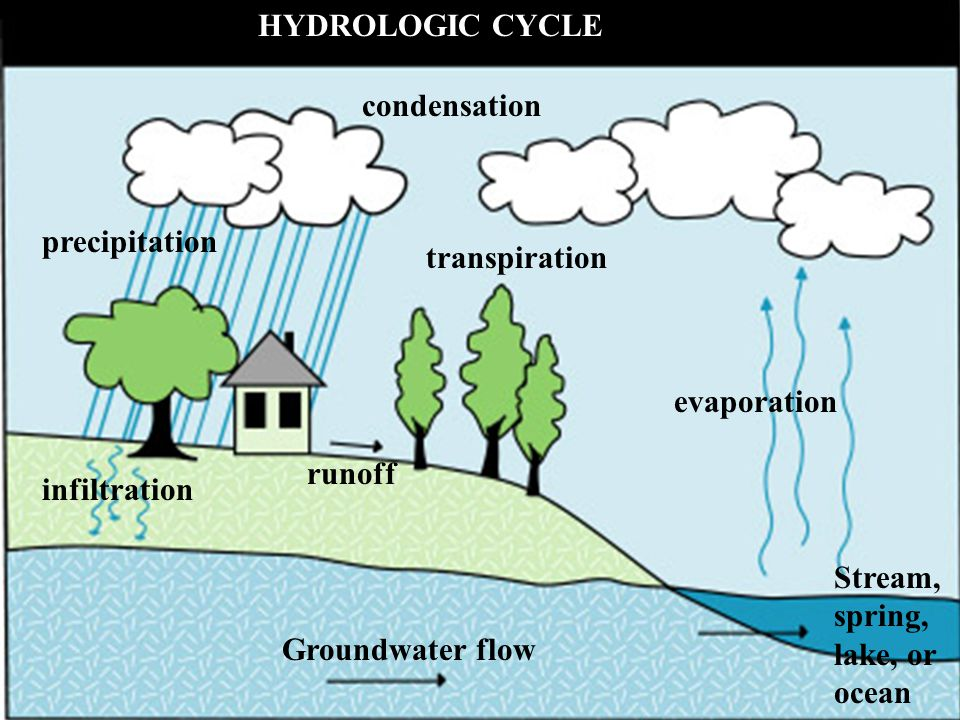 runoff HYDROLOGIC CYCLE infiltration Groundwater flow transpiration evaporation precipitation condensation Stream, spring, lake, or ocean