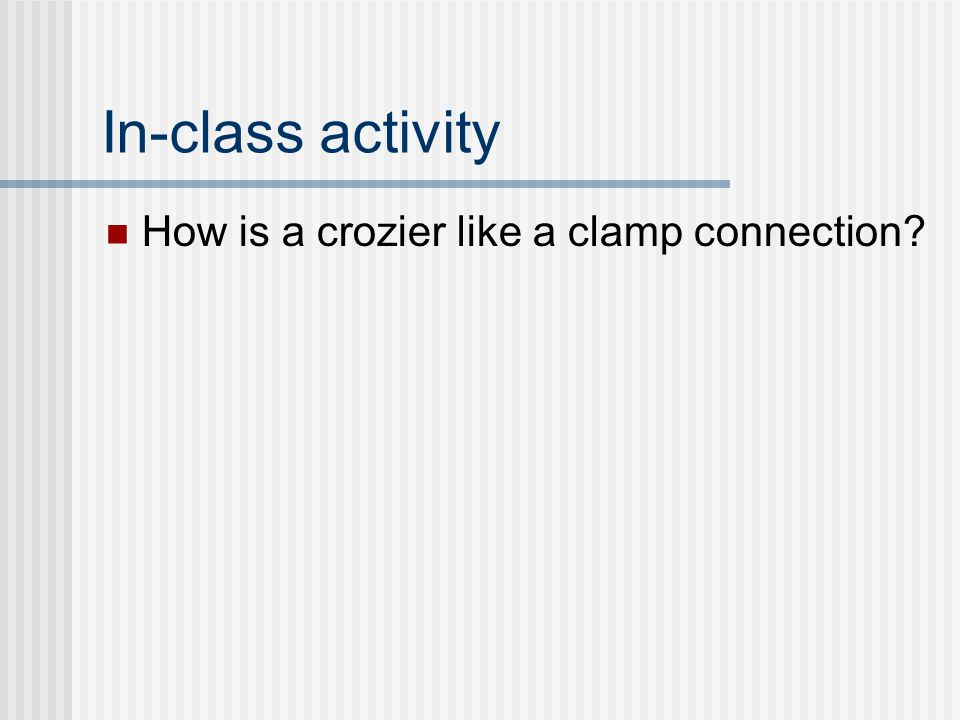 In-class activity How is a crozier like a clamp connection?