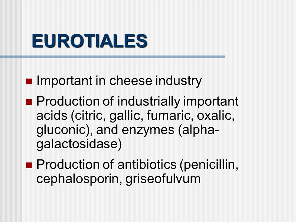 EUROTIALES Important in cheese industry Important in cheese industry Production of industrially important acids (citric, gallic, fumaric, oxalic, gluc