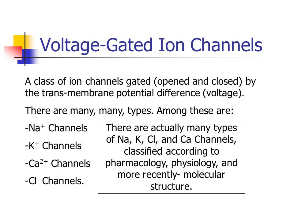 Voltage-Gated Ion Channels A class of ion channels gated (opened and closed) by the trans-membrane potential difference (voltage). There are many, man