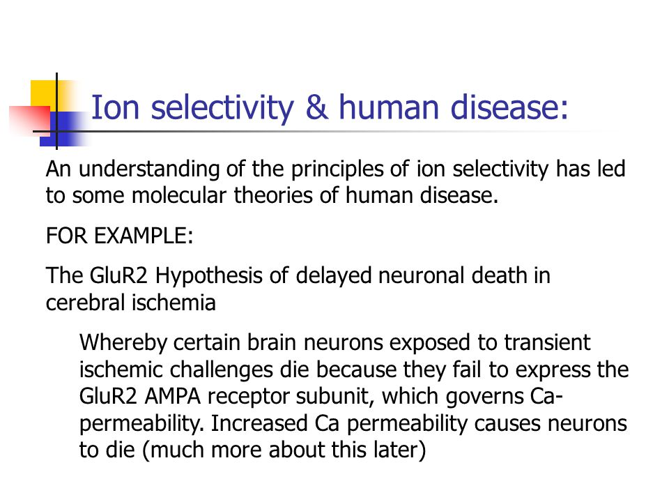 Ion selectivity & human disease: An understanding of the principles of ion selectivity has led to some molecular theories of human disease. FOR EXAMPL