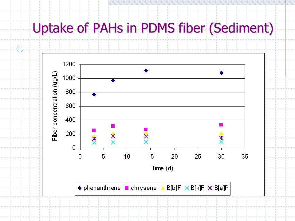 Uptake of PAHs in PDMS fiber (Sediment)