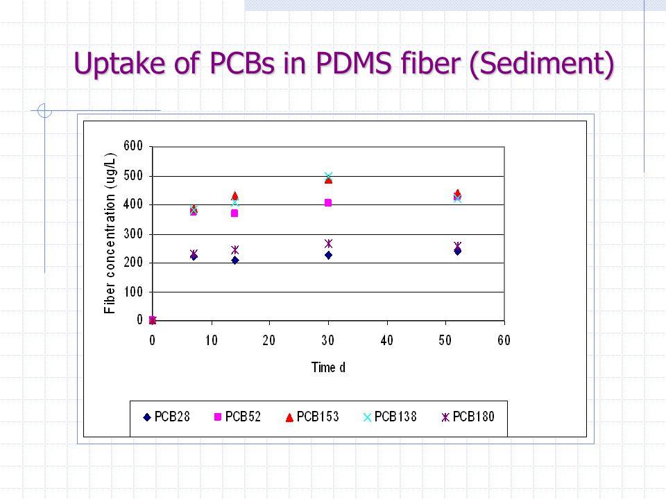 Uptake of PCBs in PDMS fiber (Sediment)