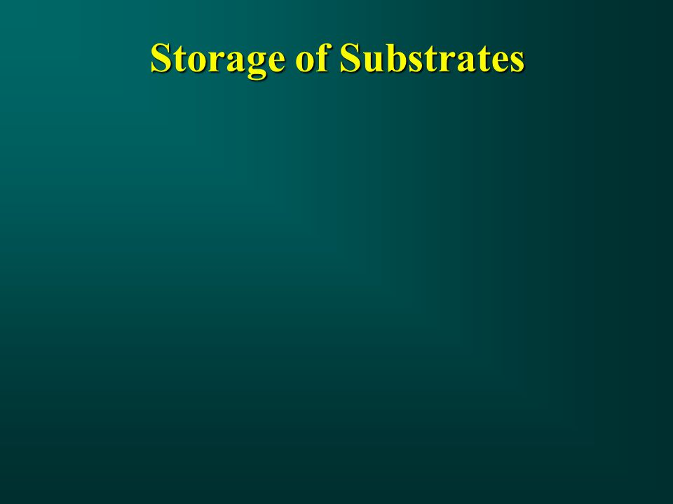 Storage of Substrates