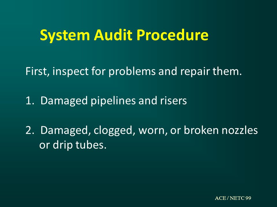 ACE / NETC 99 System Audit Procedure First, inspect for problems and repair them.