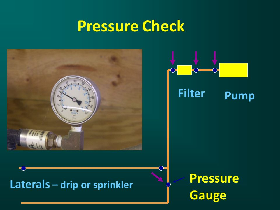 Pressure Check Filter Pump Laterals – drip or sprinkler Pressure Gauge
