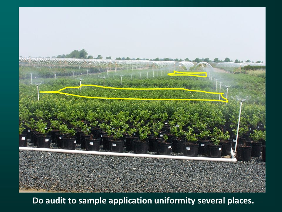 Do audit to sample application uniformity several places.