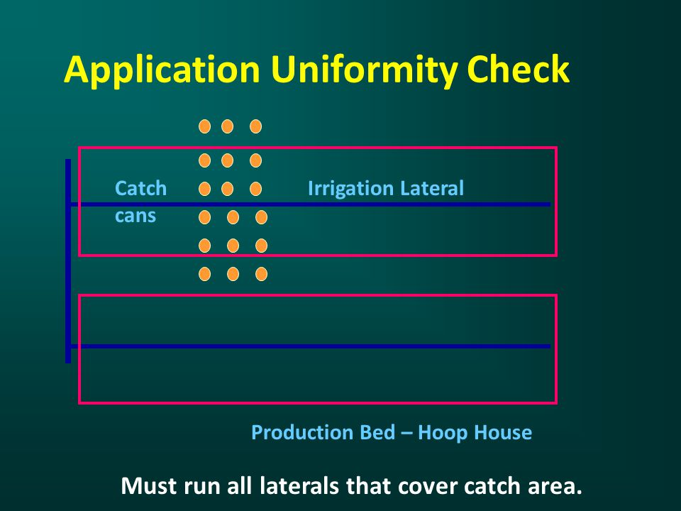 Application Uniformity Check Irrigation Lateral Production Bed – Hoop House Catch cans Must run all laterals that cover catch area.