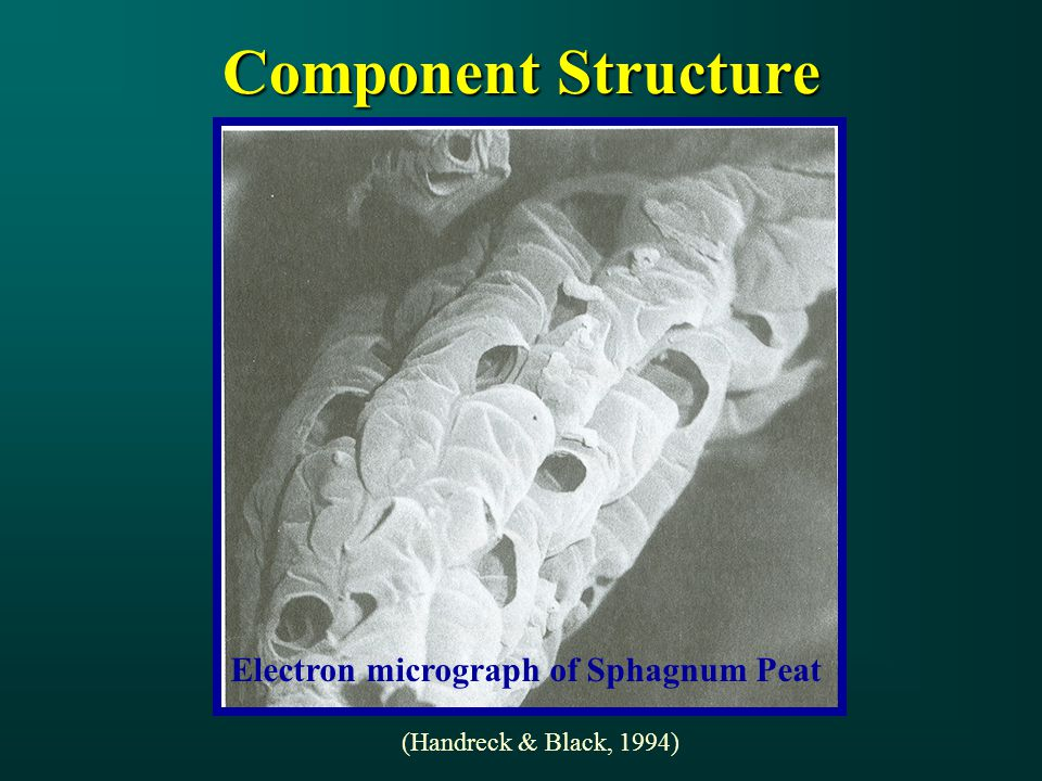 Component Structure (Handreck & Black, 1994) Electron micrograph of Sphagnum Peat