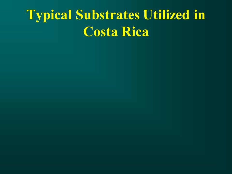 Typical Substrates Utilized in Costa Rica