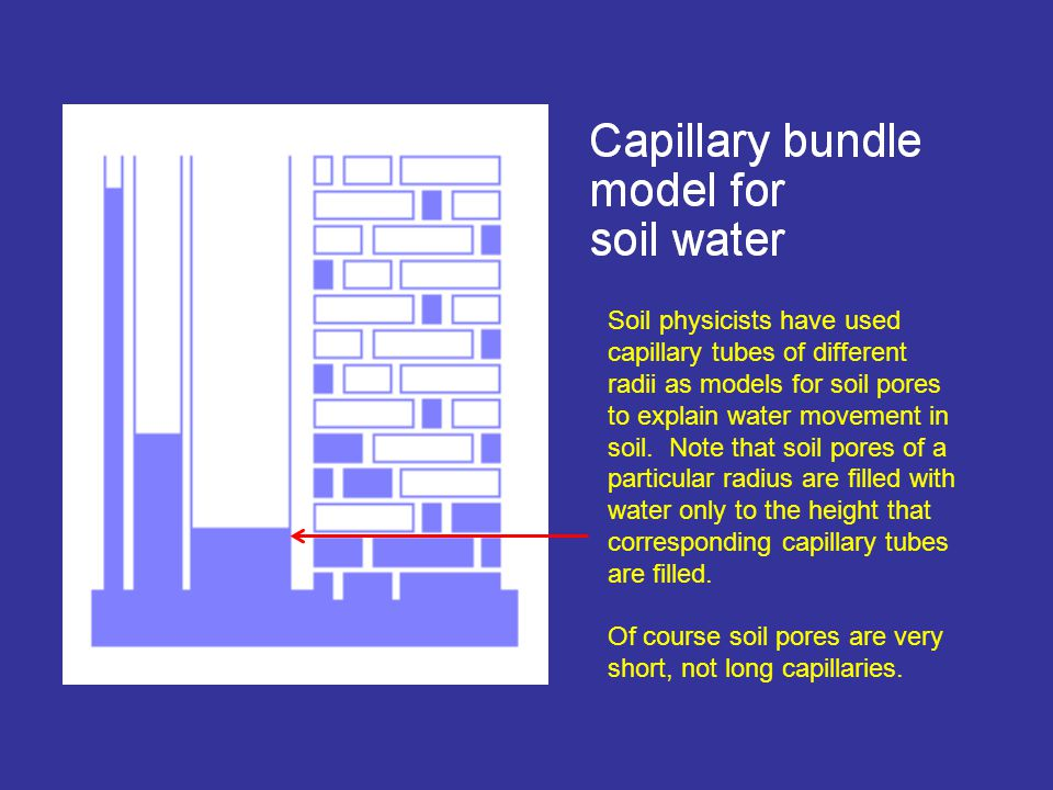 Soil physicists have used capillary tubes of different radii as models for soil pores to explain water movement in soil.