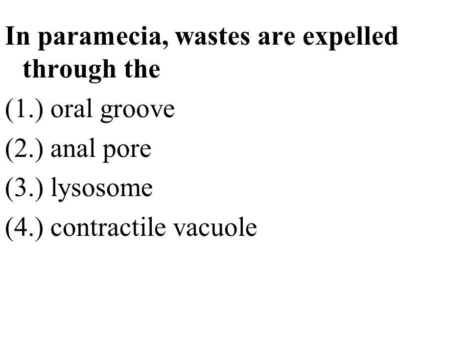 In paramecia, wastes are expelled through the (1.) oral groove (2.) anal pore (3.) lysosome (4.) contractile vacuole