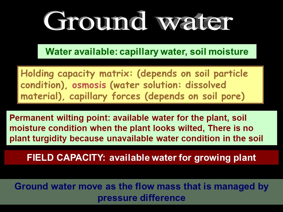 UNUSED WATER: FREE WATER Temporary wilting : air temperature makes evaporation, whereas pF is high, so the plant looks temporary wilting, the rate of water absorption is not balance with the rate of evaporation.