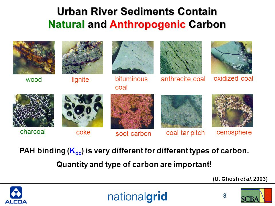 Urban River Sediments Contain Natural and Anthropogenic Carbon oxidized coal charcoal coke coal tar pitch cenosphere bituminous coal soot carbon anthracite coal lignitewood PAH binding (K oc ) is very different for different types of carbon.