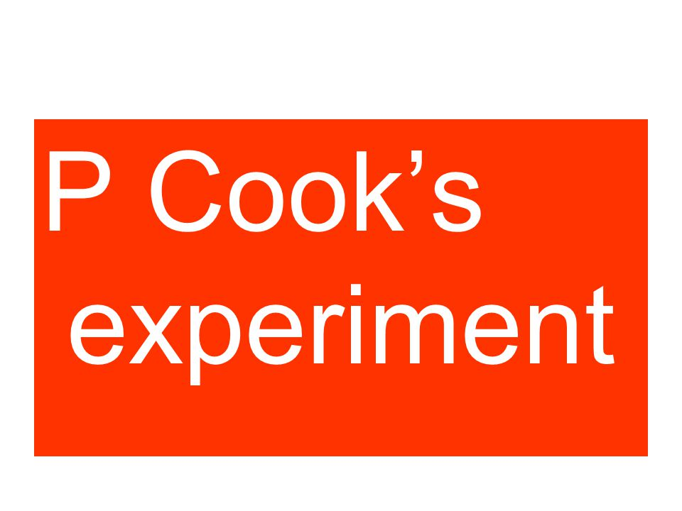 P Cook experiment P Cook's experiment