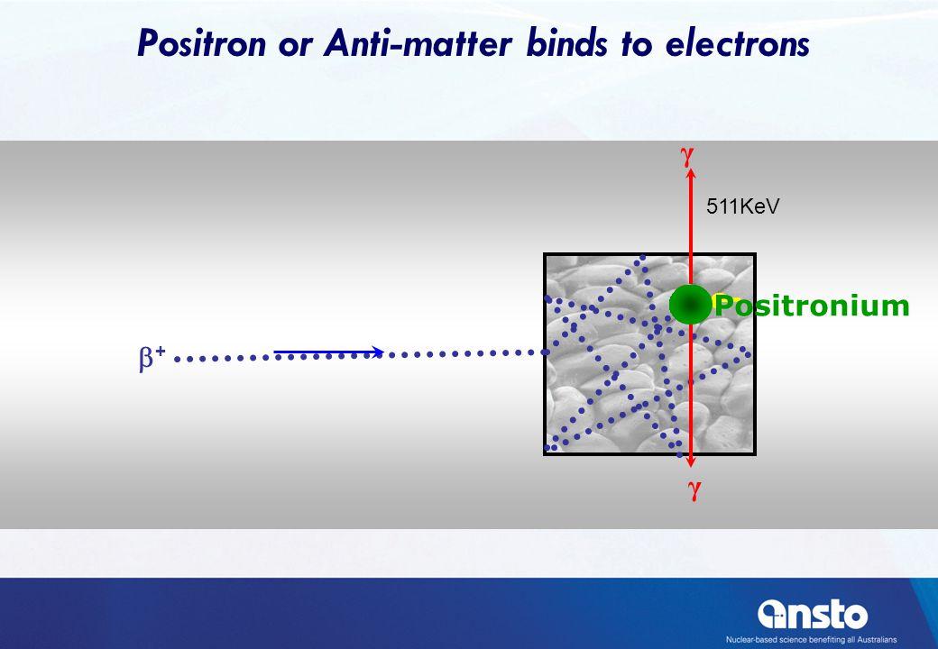 ++ e- γ γ Positronium 511KeV Positron or Anti-matter binds to electrons