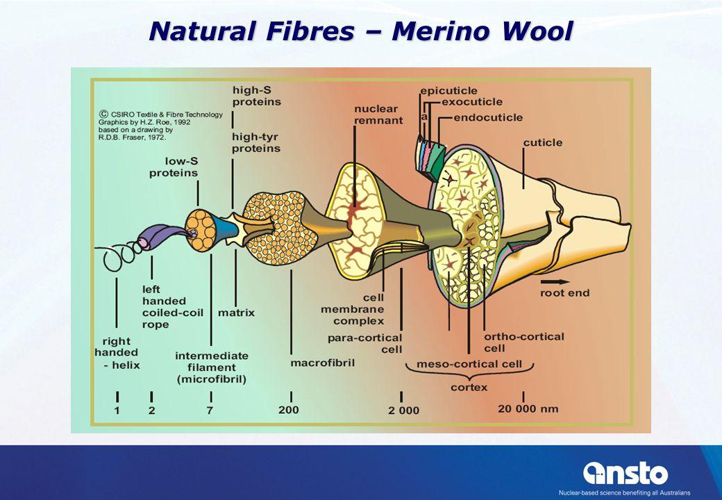 Natural Fibres – Merino Wool