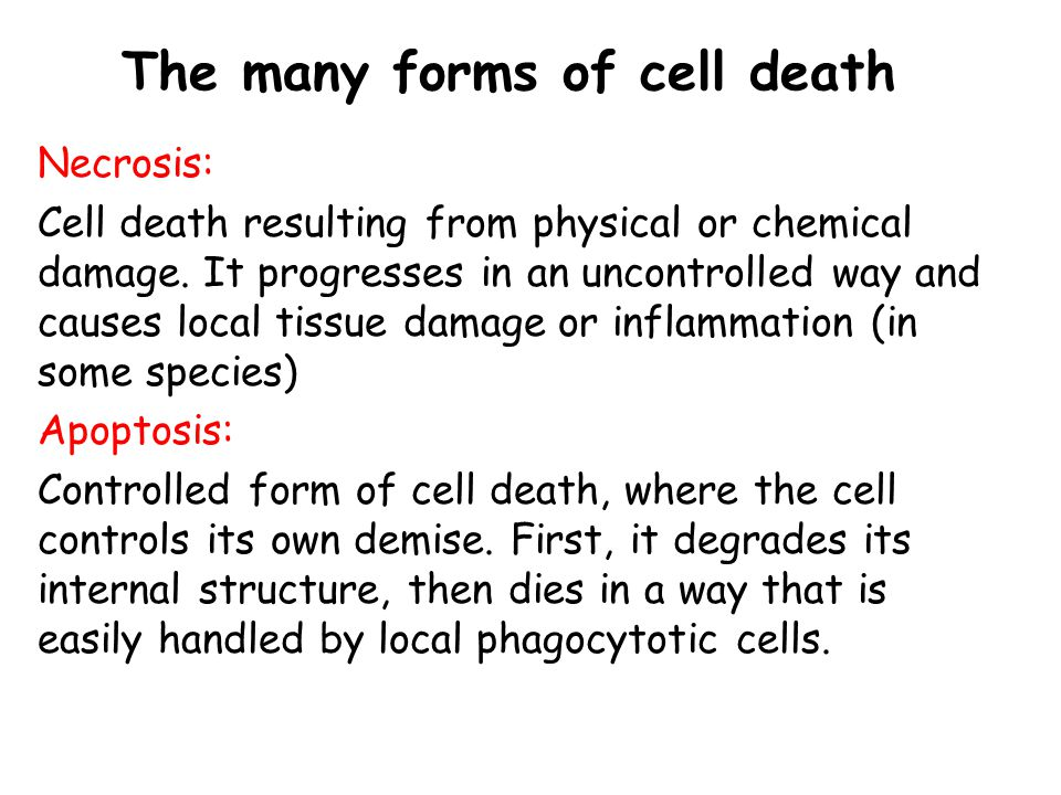 The many forms of cell death Necrosis: Cell death resulting from physical or chemical damage. It progresses in an uncontrolled way and causes local ti