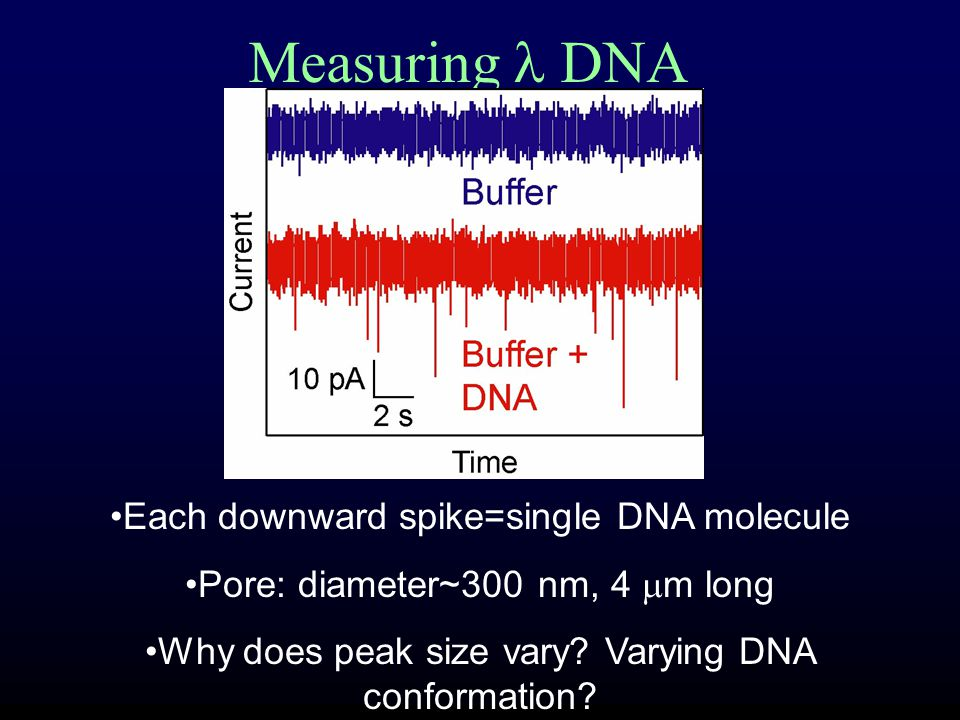 Measuring DNA Each downward spike=single DNA molecule Pore: diameter~300 nm, 4  m long Why does peak size vary.