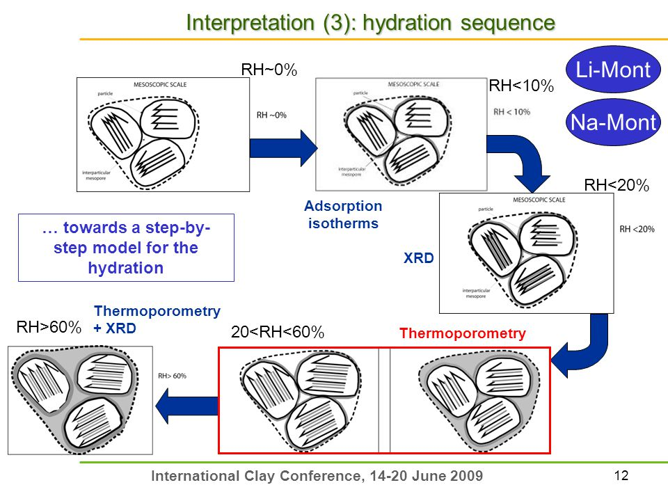 12 International Clay Conference, 14-20 June 2009 Adsorption isotherms XRD Interpretation (3): hydration sequence … towards a step-by- step model for the hydration Thermoporometry + XRD Thermoporometry RH~0% 20<RH<60% RH<20% RH<10% RH>60% Li-Mont Na-Mont