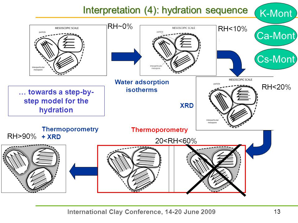 13 International Clay Conference, 14-20 June 2009 Interpretation (4): hydration sequence … towards a step-by- step model for the hydration Water adsor