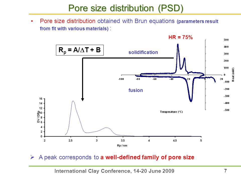 7 International Clay Conference, 14-20 June 2009 Pore size distribution (PSD) Pore size distribution obtained with Brun equations (parameters result f