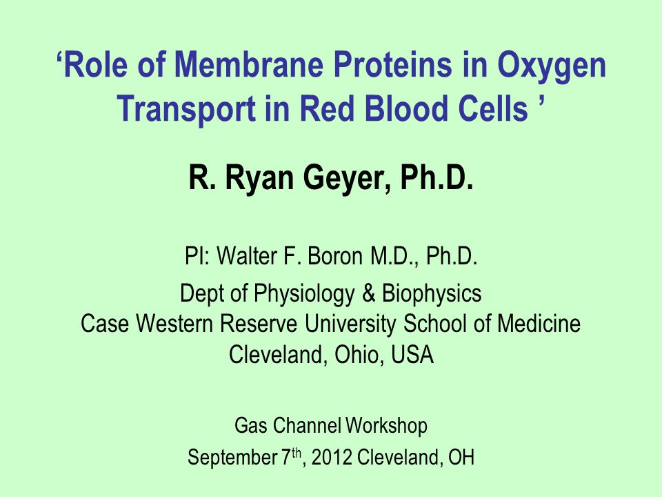 R. Ryan Geyer, Ph.D. PI: Walter F. Boron M.D., Ph.D. Dept of Physiology & Biophysics Case Western Reserve University School of Medicine Cleveland, Ohi