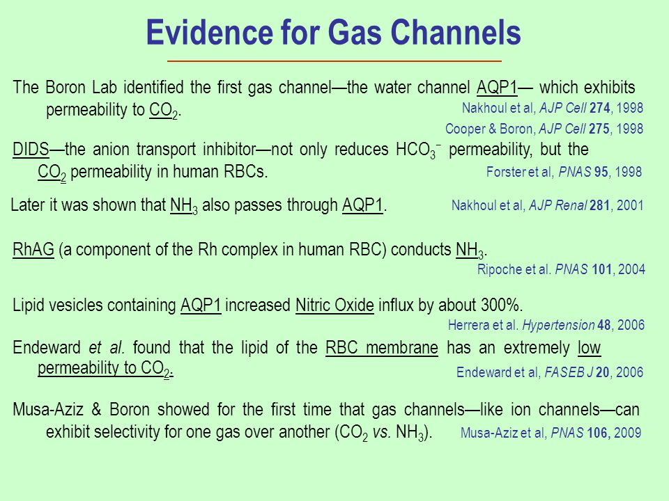 Evidence for Gas Channels Cooper & Boron, AJP Cell 275, 1998 Nakhoul et al, AJP Cell 274, 1998 Nakhoul et al, AJP Renal 281, 2001 Ripoche et al. PNAS