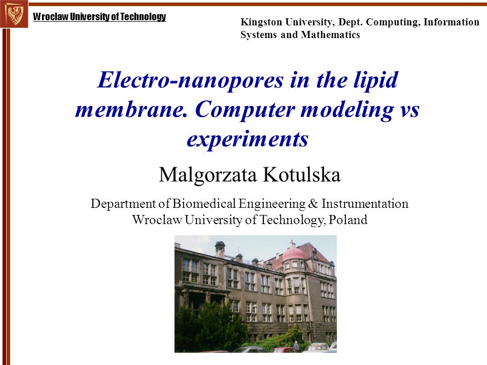 Wroclaw University of Technology Electro-nanopores in the lipid membrane.