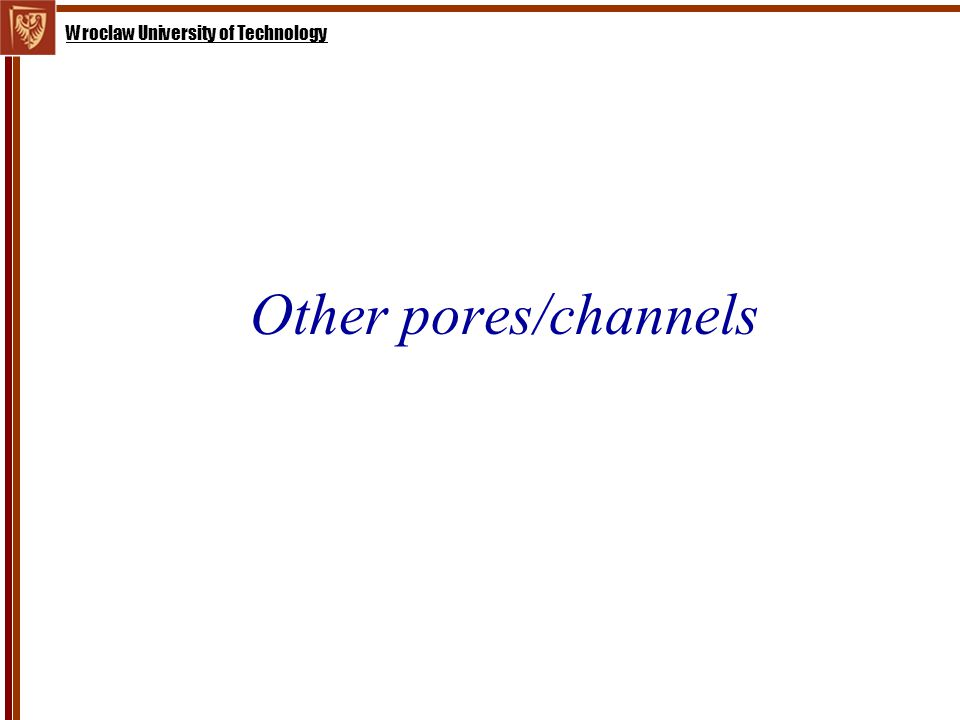 Wroclaw University of Technology Other pores/channels
