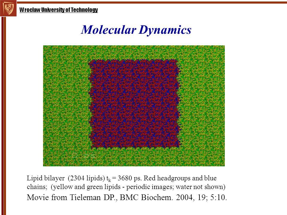 Wroclaw University of Technology Molecular Dynamics Lipid bilayer (2304 lipids) t k = 3680 ps.