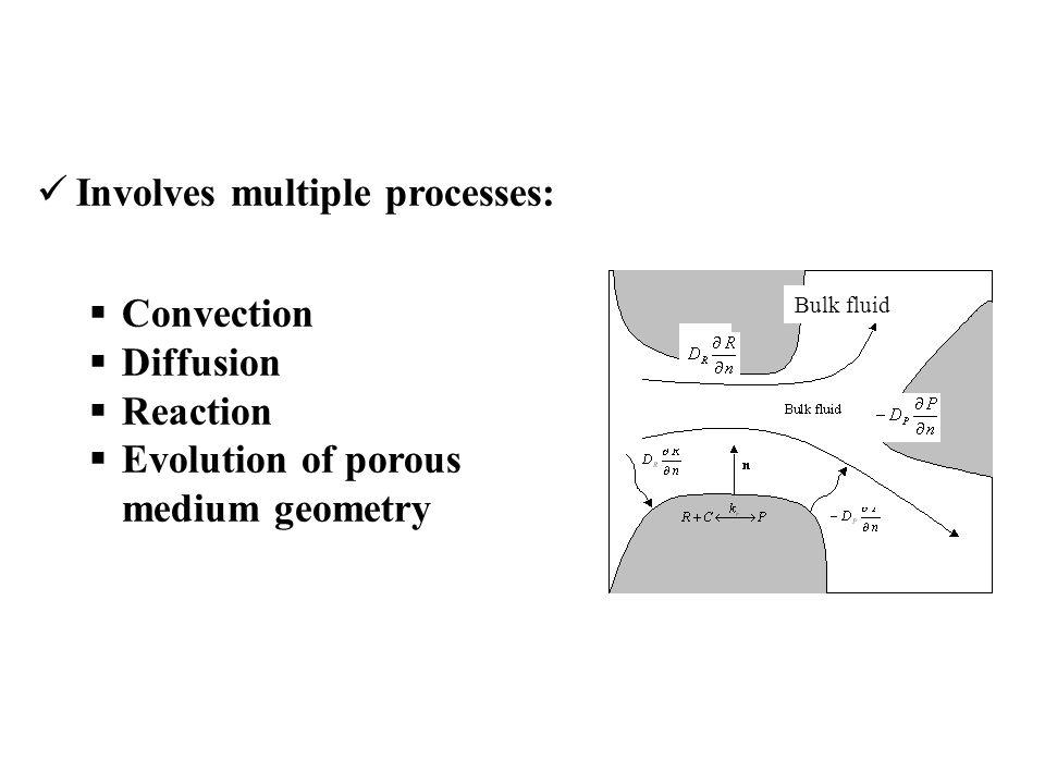 Involves multiple processes:  Convection  Diffusion  Reaction  Evolution of porous medium geometry Bulk fluid