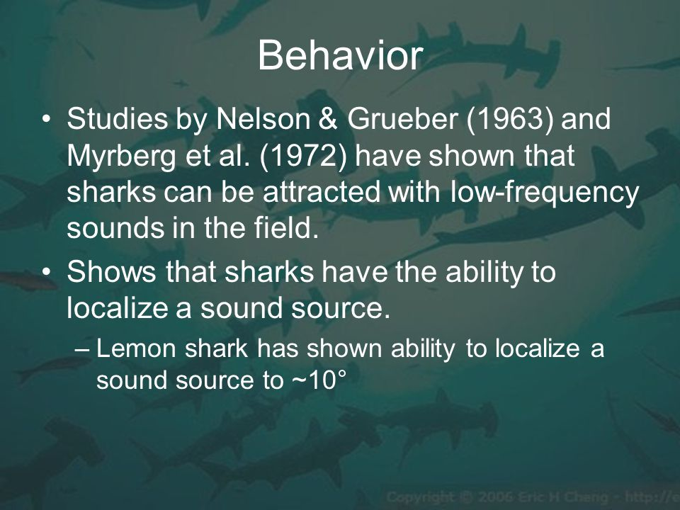 Behavior Studies by Nelson & Grueber (1963) and Myrberg et al.