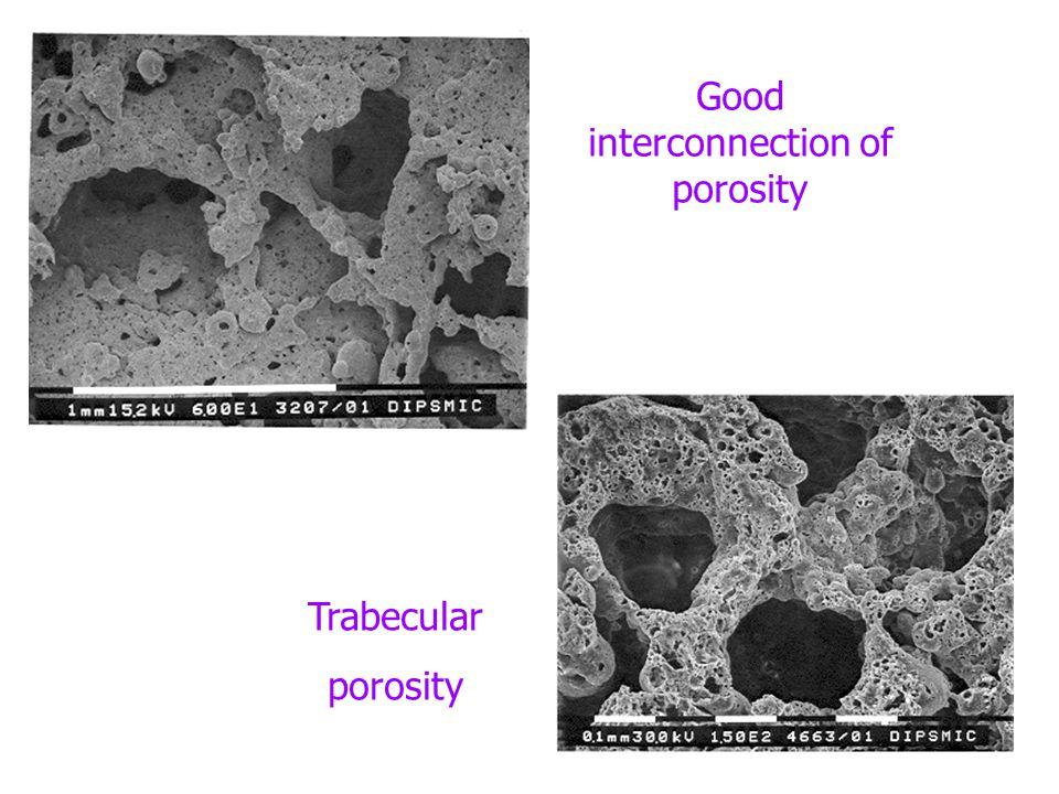 Good interconnection of porosity Trabecular porosity