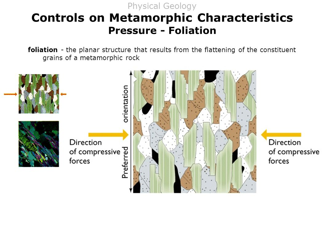 Controls on Metamorphic Characteristics Pressure - Foliation foliation - the planar structure that results from the flattening of the constituent grains of a metamorphic rock Physical Geology
