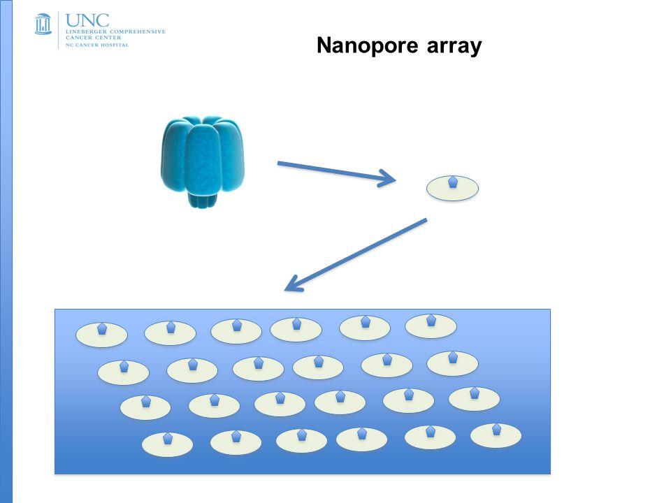 Nanopore array