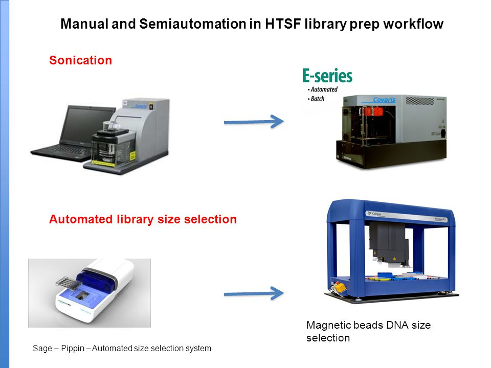 Manual and Semiautomation in HTSF library prep workflow Sonication Sage – Pippin – Automated size selection system Automated library size selection Magnetic beads DNA size selection